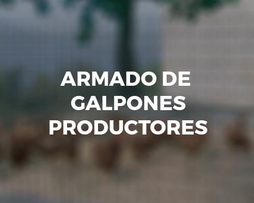 Armado de galpones productores