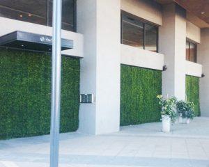 DecoRedes® en el Tortugas Open Mall